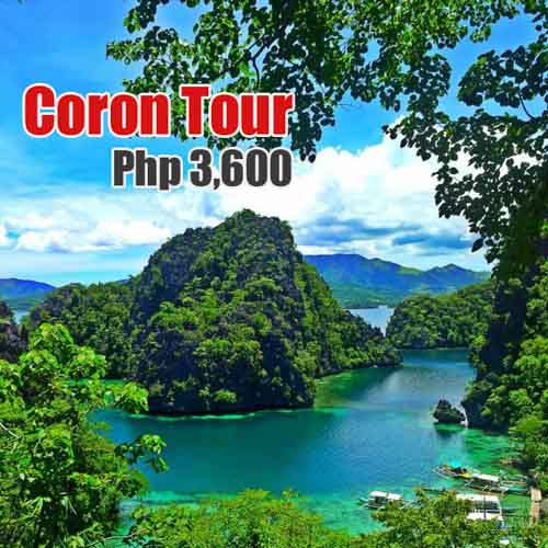 best palawan tour package review